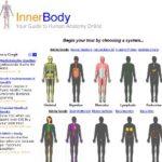 Anatomie des Menschen online – InnerBody.com
