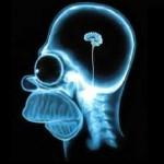Gedächtnistraining – Übungen kostenlos für Mac und Windows mit Brain Training