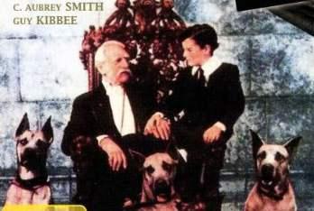 Hier finden Sie 3 schöne Weihnachtsfilme für die ganze Familie zum gratis schauen (aus Youtube).
